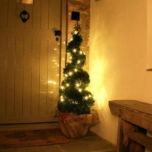Lighted holiday tree