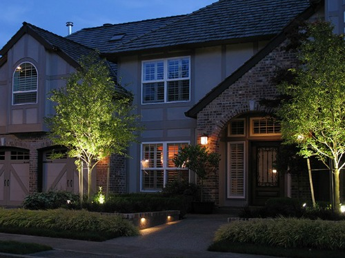 Uplighting in outdoor landscape lighting