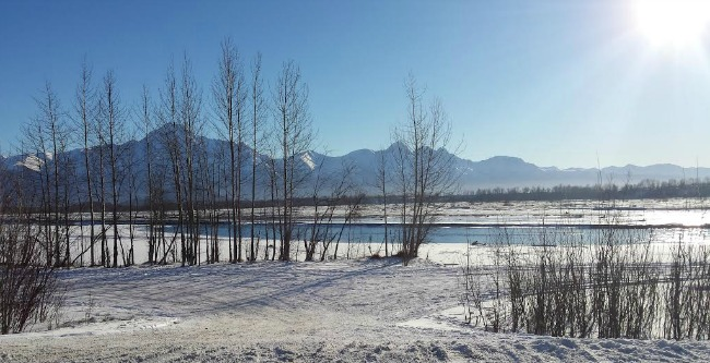 Matanuska River in Winter