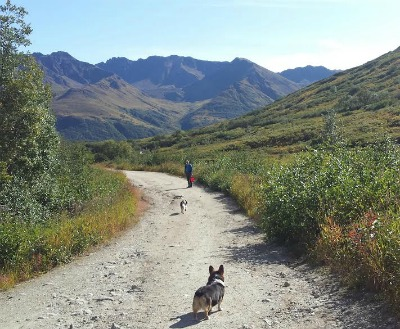 Hatcher Pass Trail