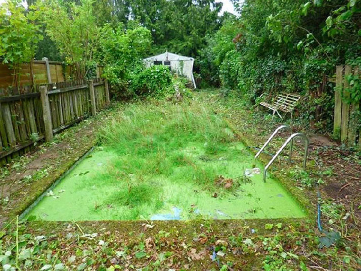 An algae filled swimming pool will not help sell your home.