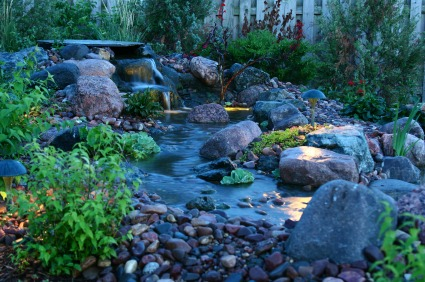 Accent outdoor landscape lighting