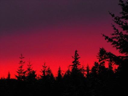 A winter sunset in Alaska