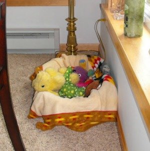 Dog bed and toys
