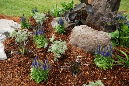 Mulch bark will dress up the garden design