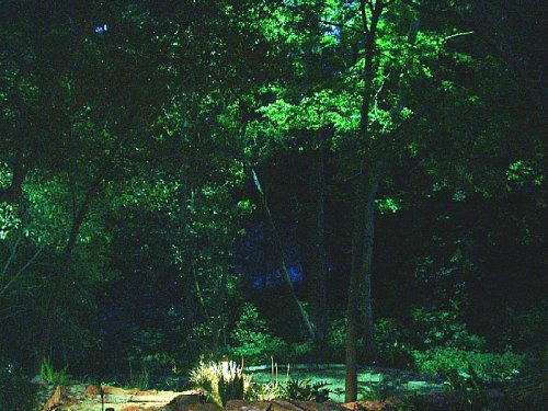 Moon lighting in outdoor landscape lighting