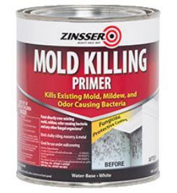 Mold killing primer paint