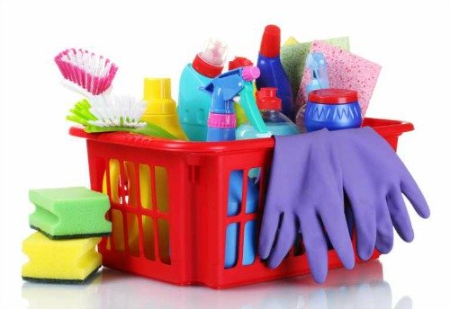 Wear protective clothing while cleaning up mold.